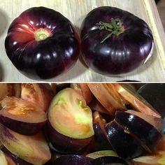Tomàquets blaus! Una troballa feta avui molt curiosa. Té més sabor a fruita que no pas a tomàquet però molt bó!  #tomaquet #tomato