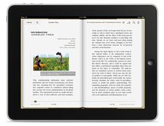 In the edWeb.net community's first webinar presenter Carl Harvey discussed eBooks and eContent. He talked about what an eBook is, and what to think about when starting to use them.