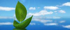 नेचर वॉलपेपर फॉर डेस्कटॉप- Nature Wallpaper For Desktop Blue Sky Wallpaper, Background Hd Wallpaper, Trendy Wallpaper, Nature Wallpaper, Beautiful Wallpaper, Latest Wallpaper, Windows Wallpaper, Wallpaper Art, Landscape Wallpaper