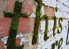 Eco Grafitti