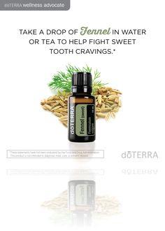 Doterra fennel oil uses