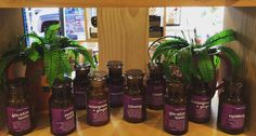 Organic  hand blended  herbalist  made in Geelong/Australia  amber jars  #leafteaaustralia #barwonheads #oceangrove #torquay #pointcook #bellsbeach #instahealth #instea #organiclooseleaftea #organictea #looseleaftea #geelong #geelongwest #gifts #giftboxes #matcha #madeingtown #paleo #vegan #tea #teas #teatox by leafteaaustralia http://ift.tt/1KnoFsa