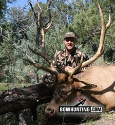 If you are an avid bowhunter, you have probably dreamed of going on an elk hunt. Whether it was seeing elk country on TV or reading about elk hunting in magazines, most hardcore bowhunters get hooked on the idea and eventually take a trip West to chase t Big Game Hunting, Elk Hunting, Hunting Pictures, Bowhunting, Archery, Deer, Wildlife, Outdoors, Adventure