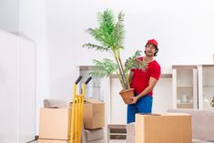 Planning a move but are not sure about the best time? Here is everything you need to know about best time to move and make the process easier and stress free. Commercial Movers, Planning A Move, Courier Service, Good Things, How To Plan