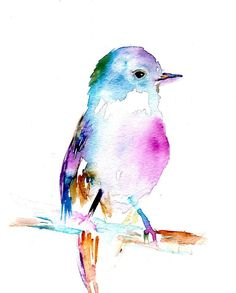 Print of Original Painting Rufus the Bird by by ArtbyJessBuhman, $25.00