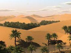 Sahara Desert (oasis)