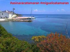 Cala d oliva# asinara#catamarano