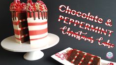 Chocolate & Peppermint Christmas Cake (Youtube Tutorial)