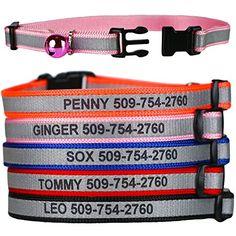 Cat Collar Breakaway Flames Vivid Black Orange 8 to 12 Inches 0.5 Inch Wide