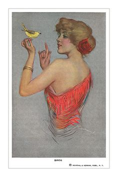'Birds' postcard by Lou Mayer by totallymystified, via Flickr