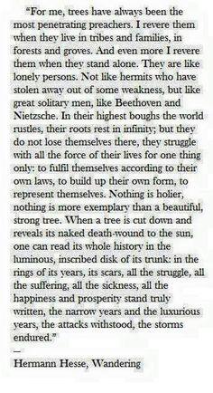 Fine words...