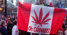 Why #Investors May Prefer #Canada's #Marijuana Industry! | Cheryl Shuman