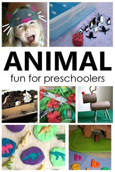 Animal Activities for Kids. Animal theme preschool activities. Preschool Songs, Preschool At Home, Preschool Themes, Preschool Science, Animal Activities For Kids, Early Learning Activities, Fun Learning, Animal Crafts, Sensory Play