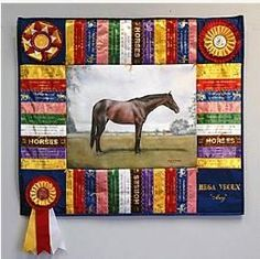 Great use for ribbons!  Print the pictures on muslin and showcase those awards!