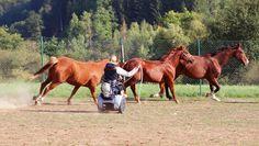 #GennyMobility