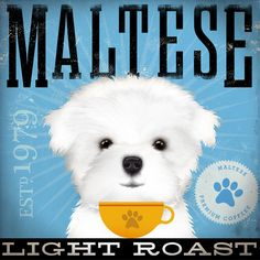 Maltese Coffee Company original graphic by geministudio on Etsy. , via Etsy.