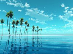海外ドラマ「HAWAII FIVE-0」でハワイの魅力に目覚める!? #深夜のこっそり話 #595