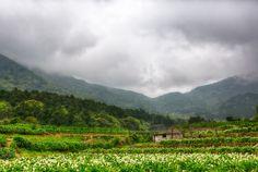 Yangmingshan national park, Beitou