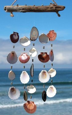 Save Your Summer Memories with Scallop Shell Art - The Adventure Coast
