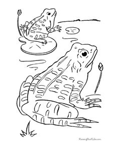 frogs coloring page to print and color - Frog Coloring Sheets