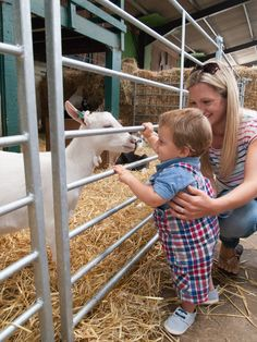 Meeting the goats in the Animal Barn at Farmer Palmer's Farm Park | Dorset. Great family and kids days out in Poole | UK