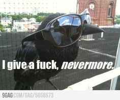 I give a f**k