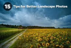 Many photographers, amateurs and professionals alike, love to capture the beauty of nature through landscape photography. We've all seen amazing landscapes in magazines, books, prints, and online galleries, but sometimes it may seen that your own landscape photos fall short of your expectations. If that is the case, here are 15 tips that can help.