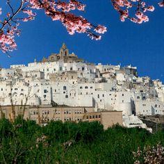 The White City: Ostuni.  Visit this spectacular place in Puglia.   #ofantobuyfromitaly #italy #ostuni #puglia