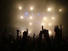 concert hands in the air - Google Search