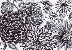 ink drawing flowers - Google Search