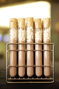 Hot chocolate & marshmallows test tubes at a science-themed wedding