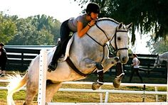 Equestrian for Life