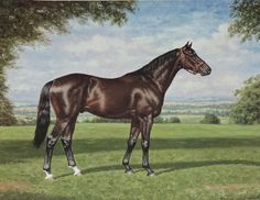 painting by Richard Stone Reeves - Nearco