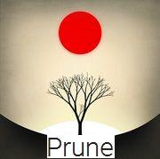 UNIVERSO NOKIA: #Prune #Puzzle #Game #Basato sulla #Bellezza | Per...