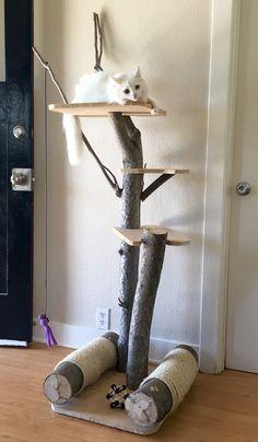 DIY Cat Stuff... Custom Built Cat Tree #catsdiyshelves