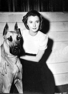 """The photo """"Barbara Stanwyck"""" has been viewed 996 times. Golden Age Of Hollywood, Classic Hollywood, In Hollywood, Famous Couples, Famous Women, Famous People, Santa Monica, Double Indemnity, Film World"""