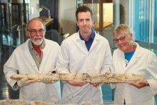 Gary Flewelling, Dr Tim Holland and Barb Flewelling holding a rib of Austrosaurus.