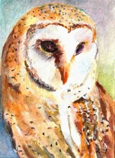 """Original  ACEO watercolor painting Barn Owl 3.5"""" x 2.5"""" by Zena J"""