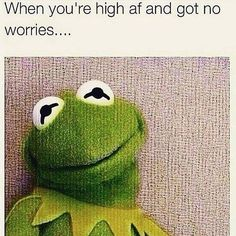 Like this facebook page for a chance to win big!  www.facebook.com/thectu  #weed #marijuana #cannabis #cannabisculture #weedstagram #weedsgram420 #420 #stayhigh #stonernation #follow #high #legalize #cute #thc #instagood #cbd #hash #sativa #indica #highli