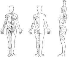 Dry Brushing lymphatic direction instructions