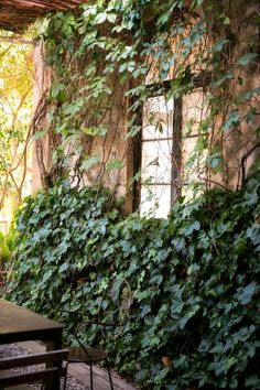 The Best Secret Garden In Barcelona palo alto gardens old factory complex  barcelona - The Palo Alto gardens have served as a backdrop for films, including Woody Allen's 'Vicky Cristina Barcelona' via Gardenista