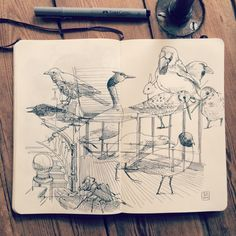 Jared Muralt - I was totally blown away by the historical Biologiska Museet back from 1893. I could spend hours in this old magical wooden panorama. #Drawing in my #Moleskine #sketchbook #panorama #museet #skandinavia #animals #bird #bug
