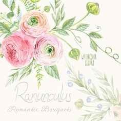 Ranunculus Bouquets Flowers Hand Drawn Clip Art Watercolor - digital flowers, DIY invites, scrapbooking, wedding invitations
