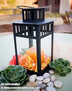 Bring wonderful colour and style to your garden with our great choice of Outdoor Garden Candles from www.scentedcandleshop.com.  These fine candles are the perfect finishing touch, whether you are entertaining or just enjoying your garden. You can also ward off any insects with our colourful selection of insect-repellent Citronella Garden Candles.  Display all your favourite pillar candles, votive candles and tea lights all around the decking or on the dinner table in beautiful candle…