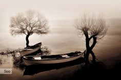 Photograph Foggy lake by Ahmet Utgan on 500px