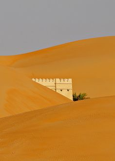 Liwa Desert, United Arab Emirates