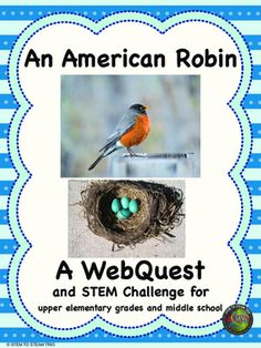 This is highly engaging science WebQuest about robins. Students will be able to read, listen to bird calls, and watch short video clips while learning about robins. It is paired with a Make a Bird Nest STEM challenge. Students will need to gather natural materials and build a nest meeting several mathematical criteria: including width, height, and weight.