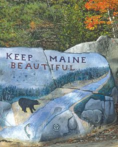 Maine Hikes, So taking advantage of these this spring and summer !