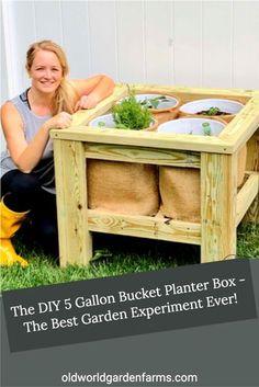 Planter Box Plans, Garden Planter Boxes, Diy Planters, Farm Gardens, Outdoor Gardens, Growing Gardens, Garden Yard Ideas, Lawn And Garden, Bucket Gardening