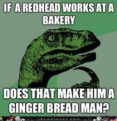 Philosoraptor Meme On The Gingerbread Man | Funny Pics, Funny Gifs, Funny Videos, Funny Artists